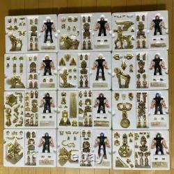 BANDAI 2000 CLASSIC SAINT SEIYA MYTH CLOTH 12 GOLD SAINTS BOX LTD EDITION Figure